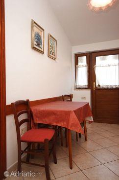 Apartment A-7335-b - Apartments Novigrad (Novigrad) - 7335