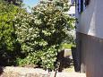 Courtyard Supetar (Brač) - Accommodation 7547 - Vacation Rentals with pebble beach.