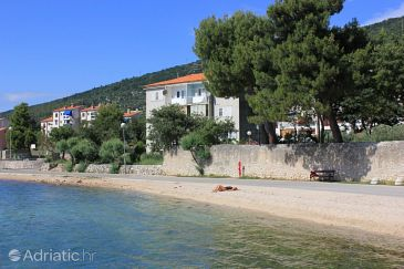 Property Cres (Cres) - Accommodation 7933 - Apartments near sea with pebble beach.