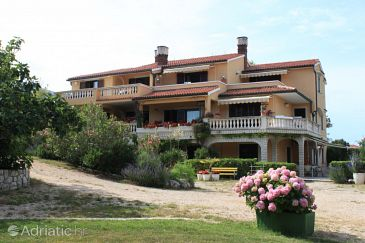 Property Nerezine (Lošinj) - Accommodation 7962 - Apartments near sea with pebble beach.