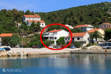 Property Zaglav (Dugi otok) - Accommodation 8171 - Apartments near sea.