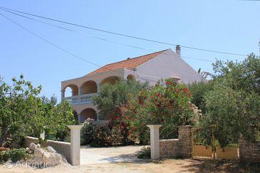 Pašman, Pašman, Property 8214 - Apartments u Hrvatskoj.