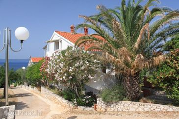 Property Guduće (Ugljan) - Accommodation 8317 - Apartments near sea with sandy beach.