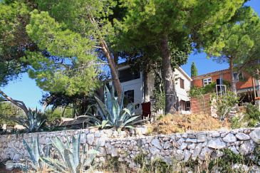 Property Ždrelac (Pašman) - Accommodation 8405 - Apartments near sea with rocky beach.