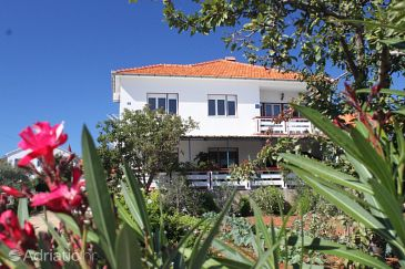 Ugljan, Ugljan, Property 8420 - Apartments and Rooms blizu mora.