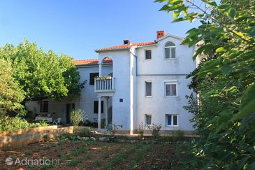 Property Ugljan (Ugljan) - Accommodation 8430 - Apartments in Croatia.