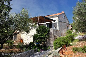 Property Uvala Vitane (Pašman) - Accommodation 8483 - Vacation Rentals near sea.
