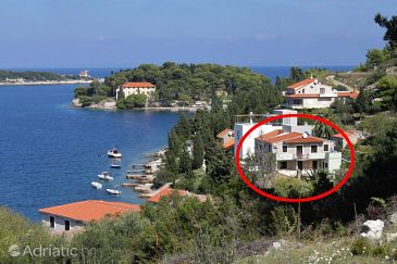 Vis, Vis, Property 8524 - Apartments blizu mora with rocky beach.