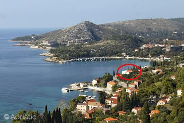 Property Mlini (Dubrovnik) - Accommodation 8586 - Apartments near sea with pebble beach.