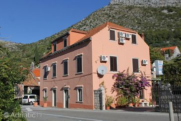 Property Trsteno (Dubrovnik) - Accommodation 8595 - Apartments and Rooms in Croatia.