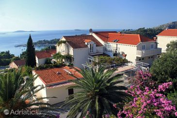 Property Mlini (Dubrovnik) - Accommodation 8743 - Apartments and Rooms with pebble beach.