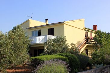 Property Zaglav (Dugi otok) - Accommodation 878 - Apartments in Croatia.
