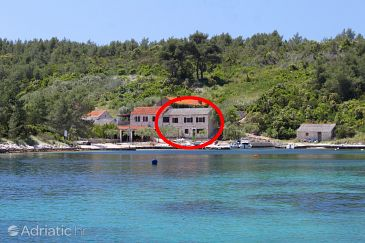 Property Šćedro - Uvala Mostir (Hvar) - Accommodation 8800 - Apartments and Rooms near sea with pebble beach.