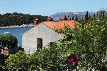 Property Cavtat (Dubrovnik) - Accommodation 8833 - Apartments near sea with pebble beach.