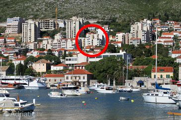 Property Dubrovnik (Dubrovnik) - Accommodation 8955 - Apartments with pebble beach.
