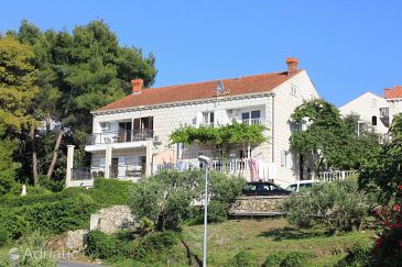 Property Cavtat (Dubrovnik) - Accommodation 8963 - Apartments in Croatia.