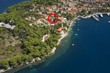 Property Cavtat (Dubrovnik) - Accommodation 8974 - Apartments and Rooms near sea.