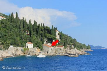 Property Trsteno (Dubrovnik) - Accommodation 9017 - Vacation Rentals near sea.