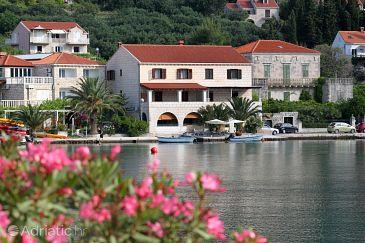 Property Zaton Mali (Dubrovnik) - Accommodation 9046 - Rooms near sea.