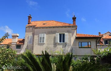 Property Dubrovnik (Dubrovnik) - Accommodation 9048 - Apartments with pebble beach.