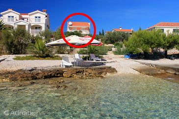 Property Gradina (Korčula) - Accommodation 9273 - Apartments near sea.