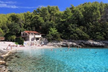Property Zavalatica (Korčula) - Accommodation 9294 - Apartments near sea with pebble beach.
