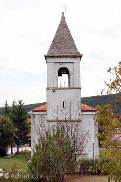 Šušnjevica u rivijeri Središnja Istra (Istra)
