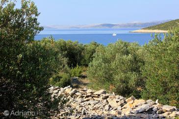 Uvala Žinčena on the island Pašman (Sjeverna Dalmacija)