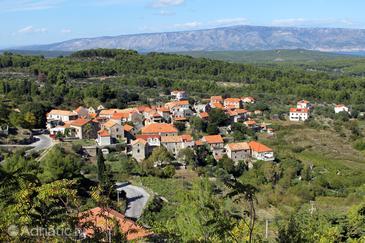 Pitve na otoku Hvar (Srednja Dalmacija)