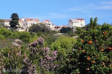 Duboka na otoku Vis (Srednja Dalmacija)